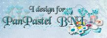 Lid van het DT-team - PanPastel BNL