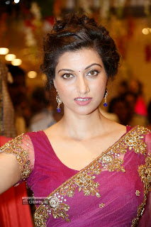 Hamsa-Nandini-Stills-in-Saree-at-Kalamandir-Opening