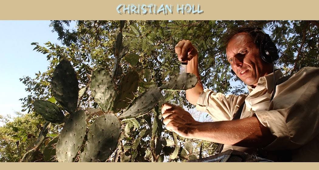 CHRISTIAN HOLL - Blog Officiel