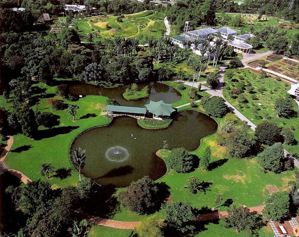 Sureste30 jardines bot nicos for El jardin de calula