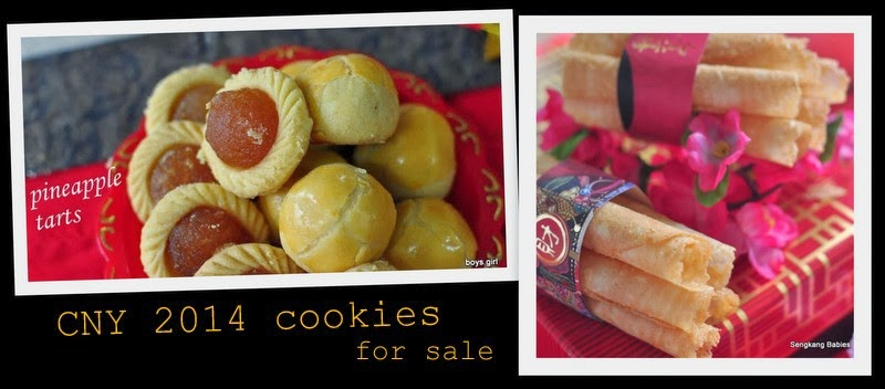 2014 CNY cookies for sale