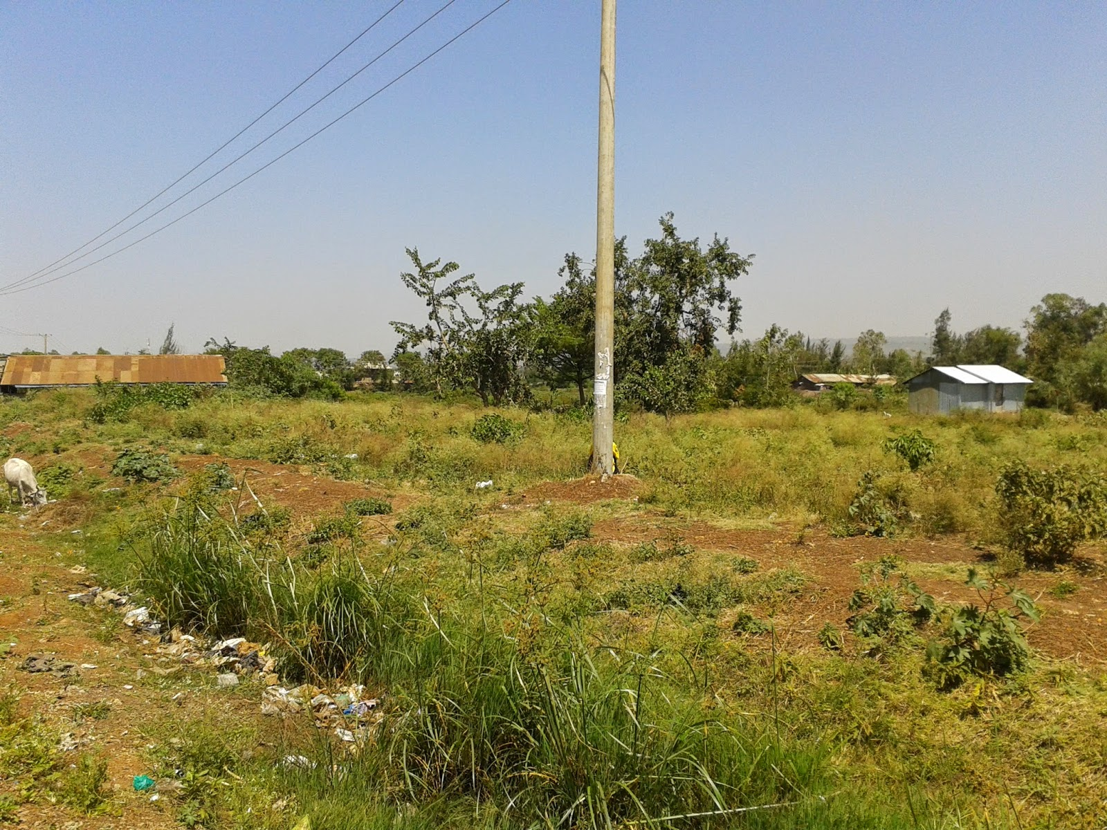 More investment opportunities offered by Kisumu real estate