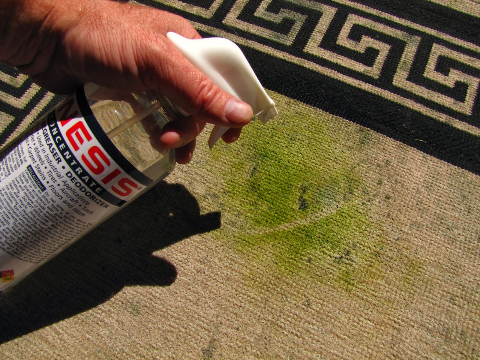 Genesis 950 Cleaning Tips And Tricks: DIY Carpet Cleaning