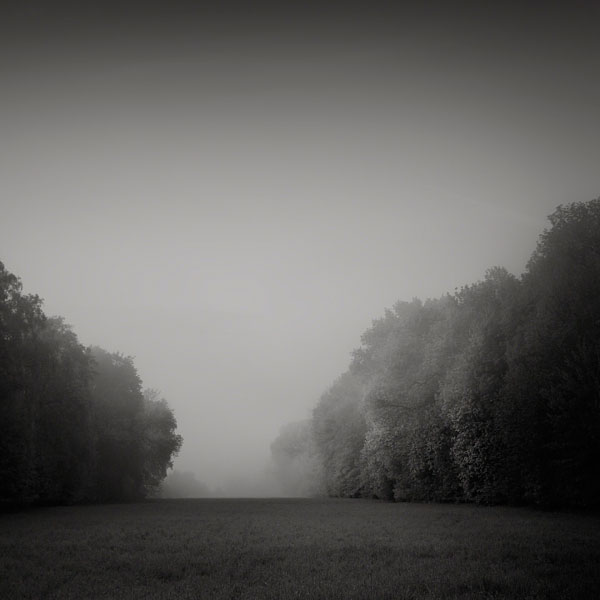 Under the Veil of Mist: Photos by Jaromir Hron