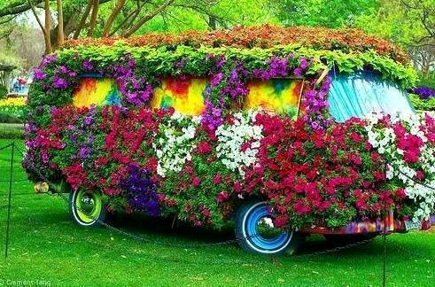 Flores Auto Car Dealer Grand Prairie Tx