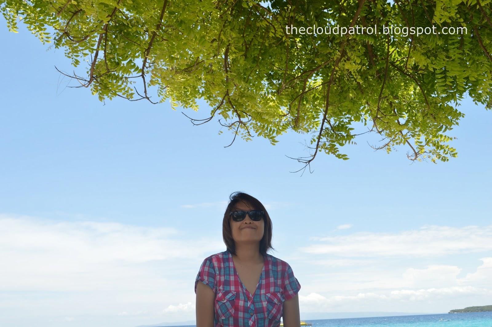 Butanding, whale shark, cebu, oslob, philippines