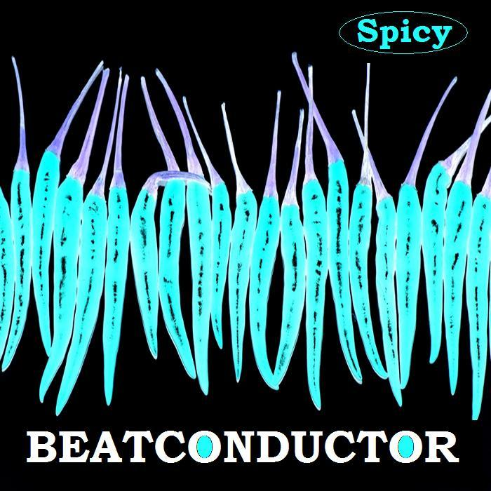 Beatconductor - A Collection Of Reworks