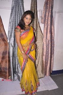 Srilekha Pictures in Saree at Pochampally Ikat Art Mela ~ Celebs Next