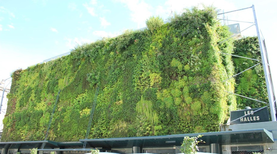 vertical green wall chinaforefrontinternational