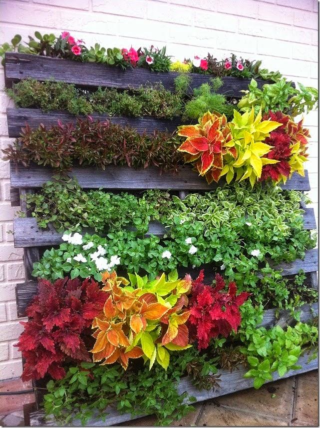 Plantamer im genes de jard n vertical casero for Como hacer un jardin vertical casero y economico
