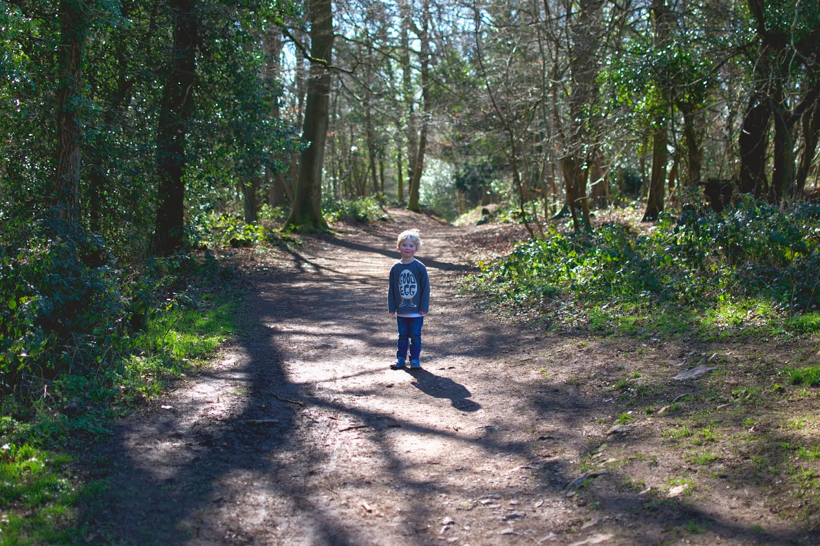 leigh woods bristol family walk