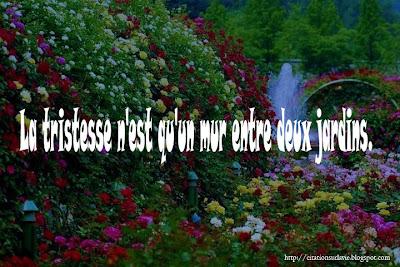 Phrase triste