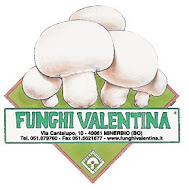 Funghi Valentina