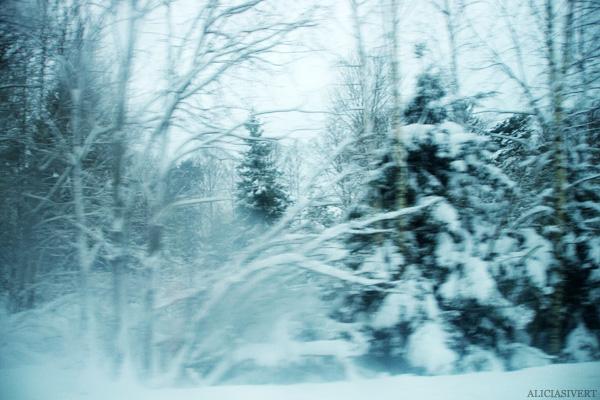 aliciasivert, alicia sivertsson, snö, snow, winter, vinter