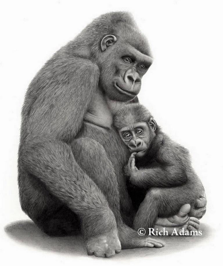 dibujos-de-animales