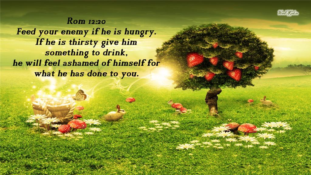 Rom 1220 Bible Verse Wallpaper