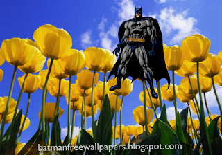 Batman Posters Wallpapers The Dark Knight in Flowers Tulips Field background