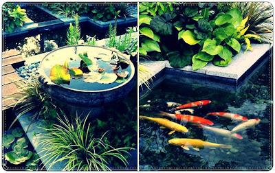 gambar kolam minimalis