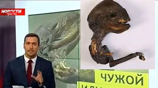 Científicos descubren criatura alienígena cerca de importante planta nuclear