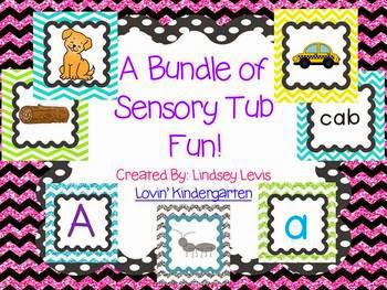 http://www.teacherspayteachers.com/Product/Sensory-Tub-Activities-BUNDLE-765281