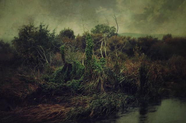 landscape art photo contemporary art