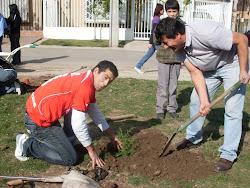 Vecinos de San Alberto, plantando árboles.