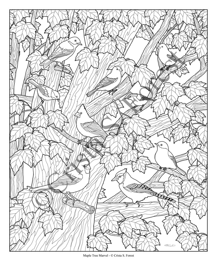 Forest Wildlife Art Autumn Birds Adult Coloring Page Detailed Tree Coloring Pages