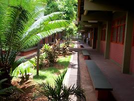 Parte do Jardim do Primeiro Pavilhão