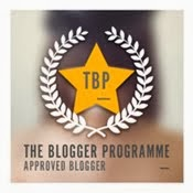 the blogger programme_