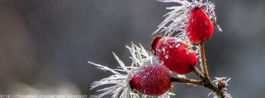 Une couverture facebook saison hiver