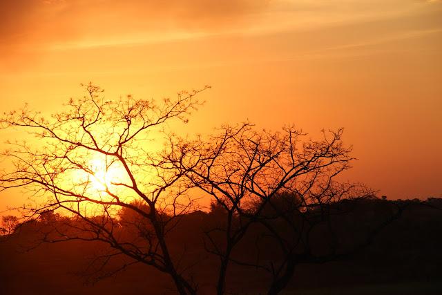 Pôr do sol  na estação seca do Cerrado