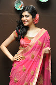 Adah Sharma Gorgeous in Pink Saree-thumbnail-12