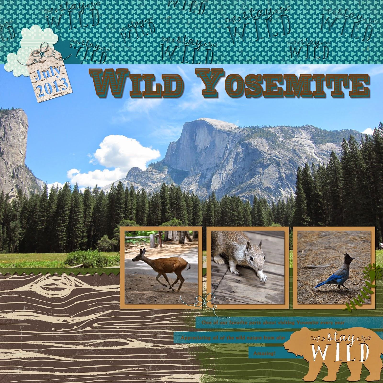 http://1.bp.blogspot.com/-F3VlWmp9gRw/U5sEooNRshI/AAAAAAAAA_Q/nKLCxj_npMU/s1600/Wild+Yosemite2.jpg