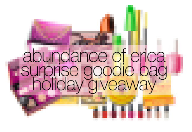 Abundance of Erica's Holiday Mystery Goodie Bag Giveaway