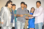 Action 3D movie audio release function photos stills gallery-thumbnail-9