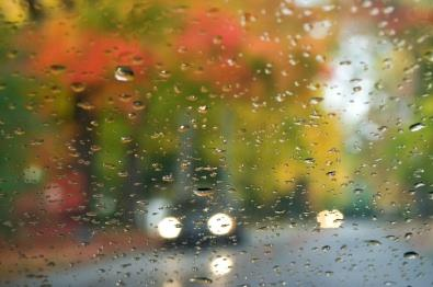 Tips For Fall Driving & Tire Care