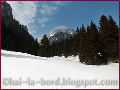 Poiana Costilei iarna Bucegi