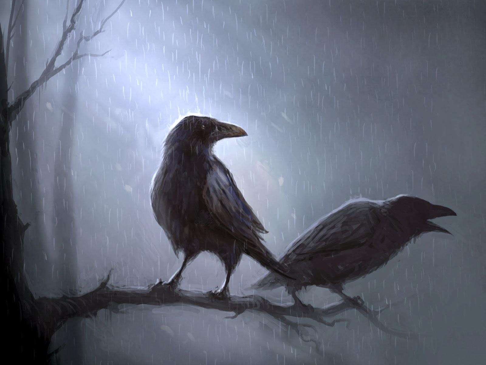 http://tapety.joe.pl/na-pulpit/zwierzeta/ptaki/dwa-kruki-na-galezi/