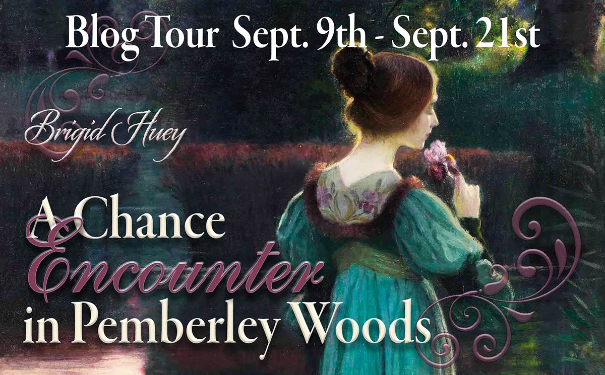 A Chance Encounter in Pemberley Woods by Brigid Huey