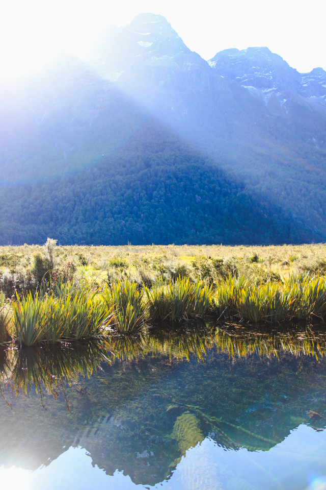 reflection on Mirror Lakes | the road to Milford Sound, Fiordland, New Zealand