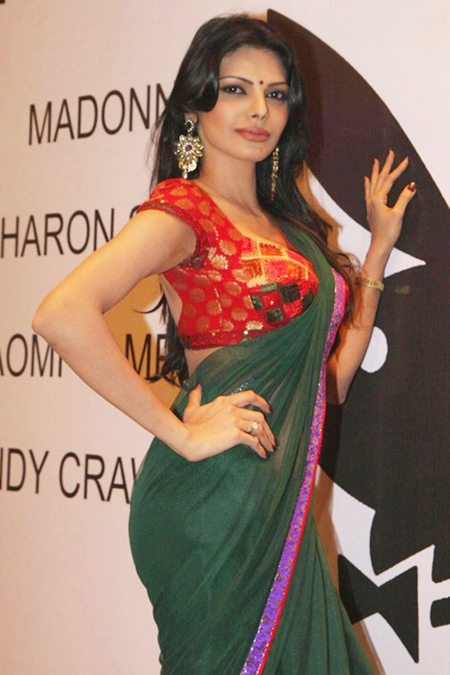 Sexy Photos Of Sherlyn Chopra In Saree