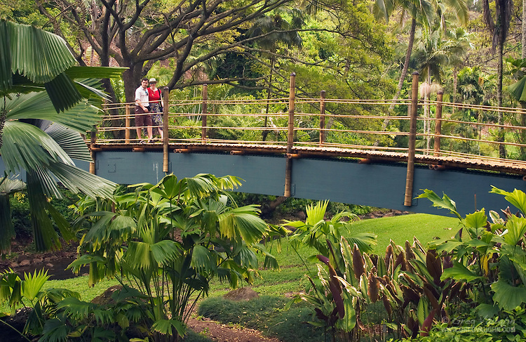 Sacred tours to hawaii soul healing and kahuna healing - National tropical botanical garden ...