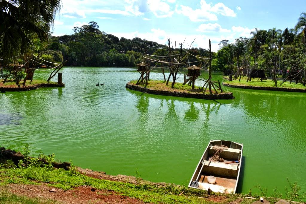 Lago dos primatas do Zoológico de São Paulo