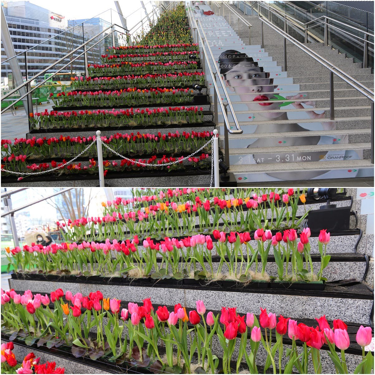 My favourite Tulips exhibition outside of Tokyo Station in Japan