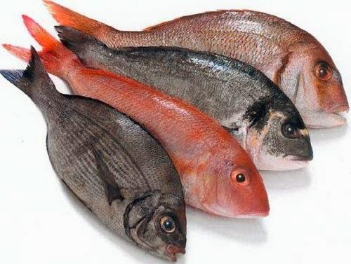 El aceite de pescado te ayuda a perder grasa