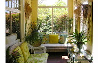 What you need to pay attention when you decorate with plants your home