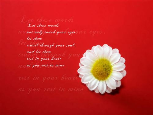 Famous Valentine's Day Quotes For Friends