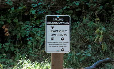 MOUNTAIN VIEW CA Extendeds Off-Leash Pilot Program