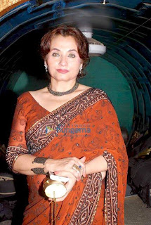 Salma Agha annouced to be a director in 2013 - Pakistan celebrities
