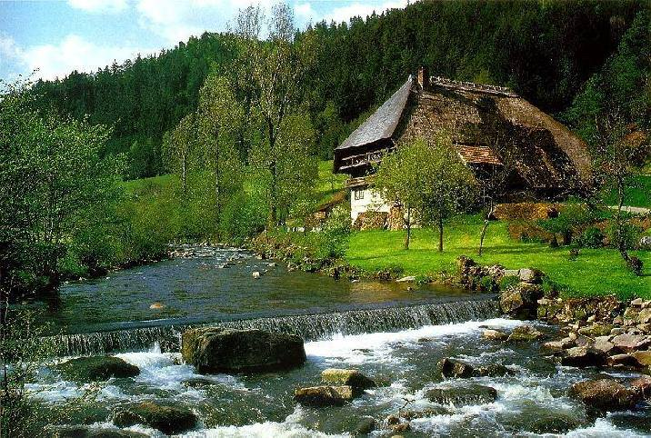 Already the romans knew about the black forest but never settled